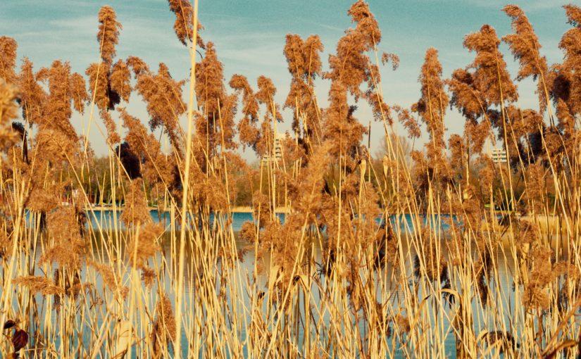 Landscapephotography